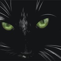 Análisis del cuento El gato negro, de Edgar Allan Poe